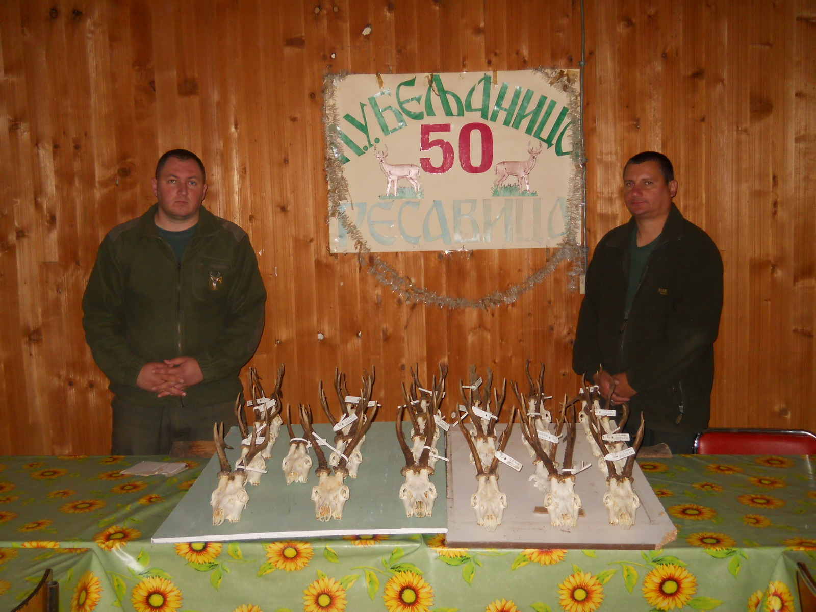 Trofeji 2013.godine