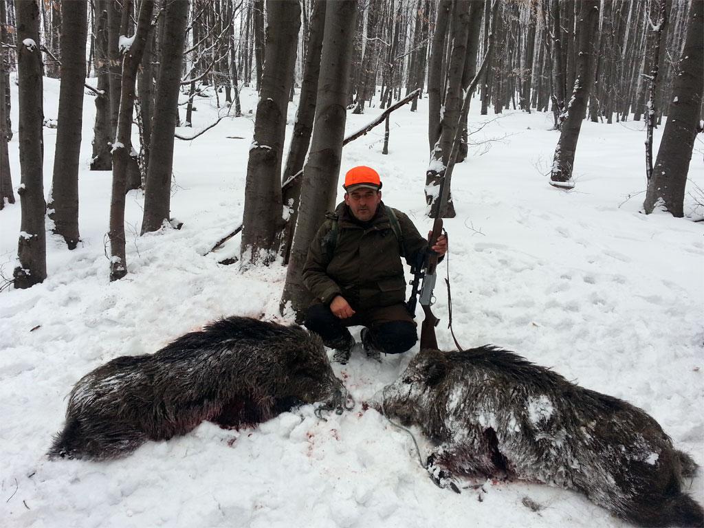 Odstrel divljih svinja
