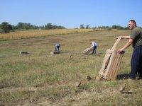 Unošenje fazanskih pilića u lovište